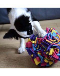 Hundelegetøj Sniffing cube